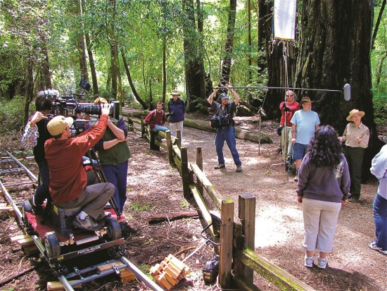 Backcountry Pictures Crew on location in Big Basin Redwoods State Park, CA