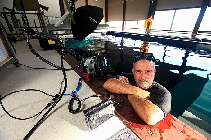 Jose G. Cano in his underwater photography studio, New Zealand.