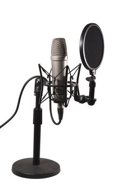 Voice Over Microphone (Photo Courtesy Dreamstime)