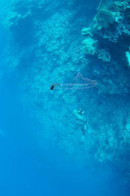 Deep Freediving