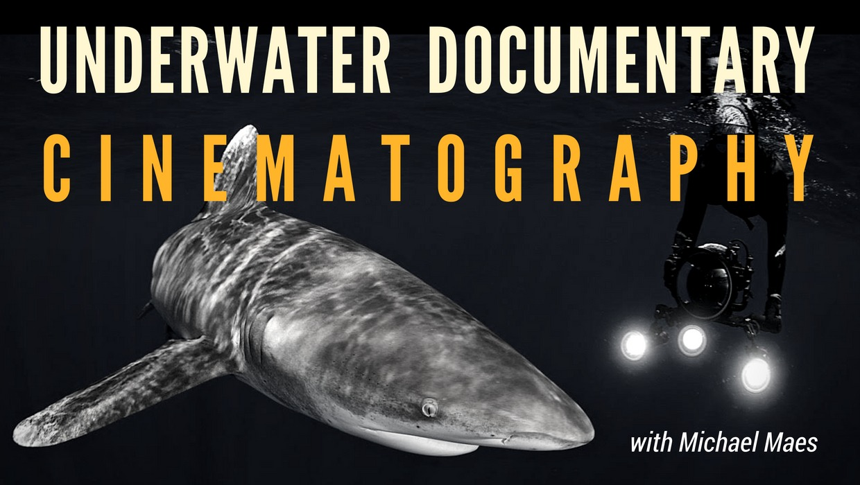 Underwater documentary cinematography with Michael Maes