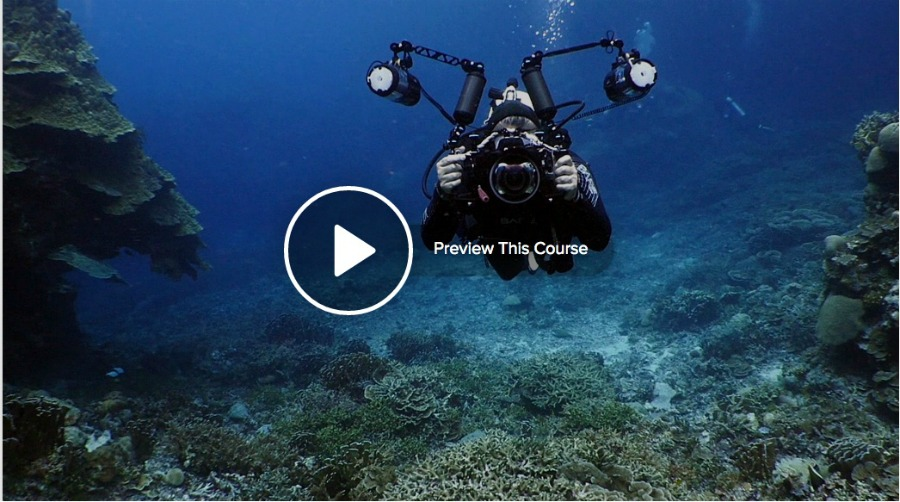 Underwater Photography: Wide Angle from Lynda.com