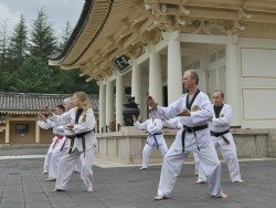 Chosun students training at Tong-Il Jeon Shrine -