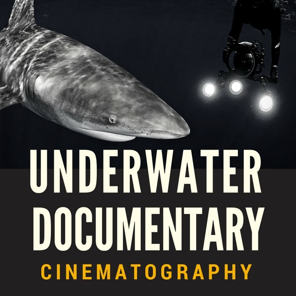 Underwater Documentary Cinematography